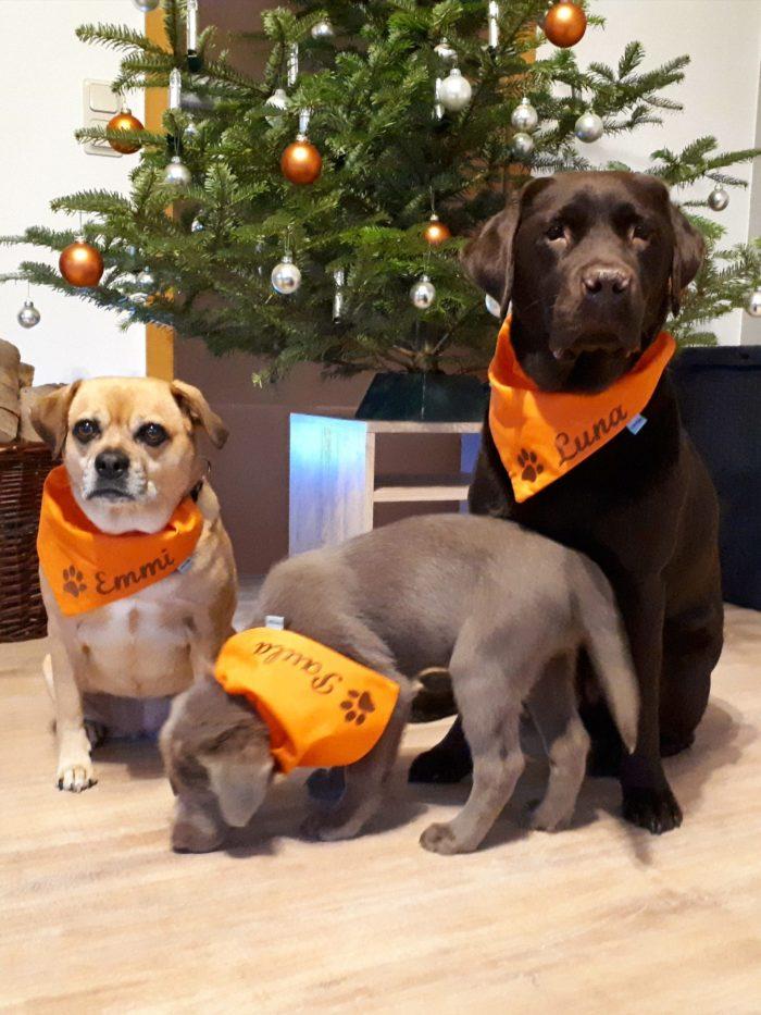 Hundehalstücher mit Namen von Lieblingsstücke 4330.
